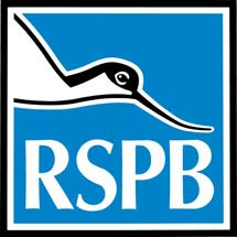 Article_4.__News_img_4___RSPB_Logo_col